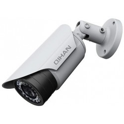 IP 2.0 Megapixel, PoE, Ottica 3,6mm,24LEDs